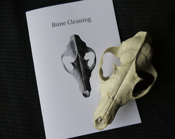 Bone Cleaning Booklet