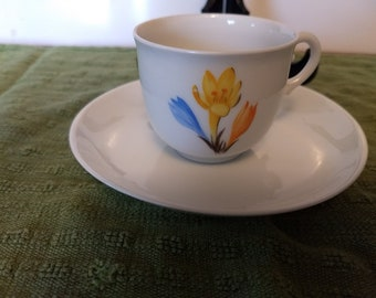 Nymphenburg Demitasse cup and saucer