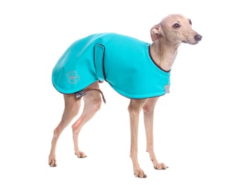 Italian greyhound blue coat made of high quality fabrics - small size