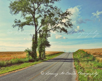 country landscape art photo, open road, backroads, blue sky and clouds, countryside with fields and trees, farm