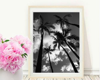 Palm Tree Photography, Art print, Palm Tree, Island Art, Beach Decor, Minimalist Art, Tropical Print, Instant download, Wall Art, Wall decor