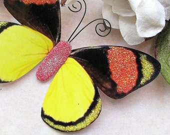 Butterfly Embellishments Tropicana