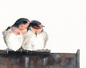 Welcome Swallows Painting -S009-  print of Watercolor Painting - 5 by 7 print wall art print - bird art print