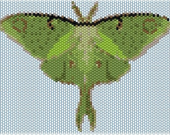 Luna Moth Peyote stitch PATTERN