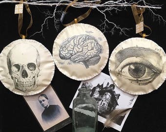 Halloween Home decor Anatomical Skull, Brain and Eye Hanging Decorations/Baubles Steam Punk Gothic Victorian Trick or Treat Horror