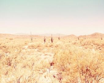 Saguaro Cactus Print, Desert Landscape, Arizona Art, Mint, Gold, Desert Photography, Cactus Home Decor, Nature Print, Southwest Decor