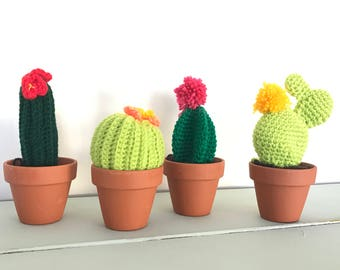 Cactus // Cornish Cacti // Home Decor // Artificial Plant // Handmade// Crochet