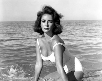 Elizabeth Taylor Suddenly Last Summer Iconic Hollywood Poster Art Photo 11x14