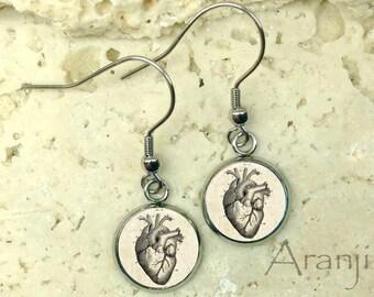 Victorian heart earrings, heart earrings, anatomical heart earrings, heart anatomy earrings, heart drawing, heart jewelry, heart, AN214DP