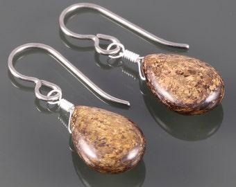 Bronzite Teardrop Earrings. Titanium Ear Wires. Genuine Gemstone. f16e093