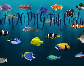 Buy 3 get one free. Pack of 20 PNG Fish Overlays, Instant Download, High Resolution.