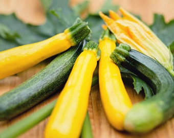 Food Photography - Kitchen Art - Zucchini Photograph - Fine Art Photography Print - Green Yellow Kitchen Decor
