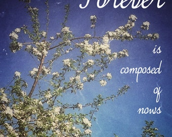 INSTANT DOWNLOAD Art Print - Blossoms - Forever