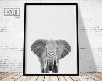 Elephant Print, Nursery Decor, Animal Photography, Nursery Animals, Elephant Photography, Animal Printables, Safari Animals, Nursery Print