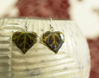 Dark green ivy leaf handmade earrings.