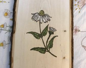 Wildflower, Woodburned & Watercolor