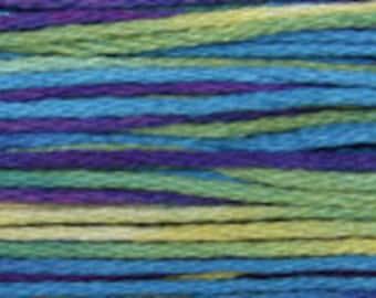 4127 Mermaid - Weeks Dye Works 6 Strand Floss