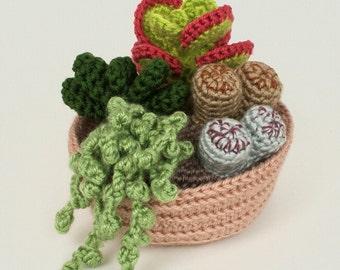 PDF Succulent Collection 2, four realistic potted plant CROCHET PATTERNS