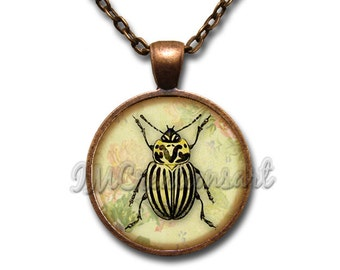 Beetle Bug Insect Yellow Black Stripes Glass Dome Pendant or with Chain Link Necklace  AN218