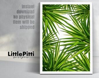 Feuilles tropicales, feuilles vertes, vert, art mural, décoration tropicale, grande feuilles de palmier impression, art mural, décor tropical, téléchargement numérique