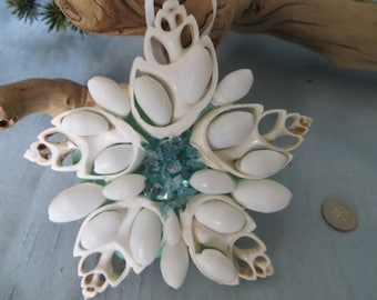 Cut seashell and bubble shell ornament_beach home decor (16)