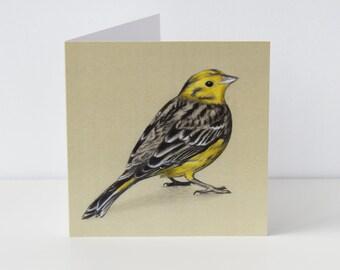 Yellowhammer Greeting Card