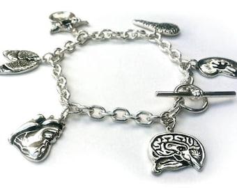 Anatomy School Charm Bracelet in solid sterling silver HEART LUNGS KIDNEY more