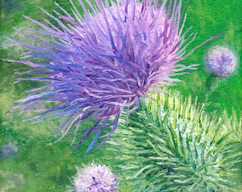 Thistle, 6 x 6 in., giclee print