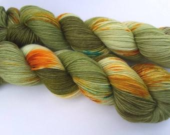 Linden - 100% Merino superwash - 260m / 100 g - hand dyed