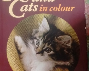 Kittens and Cats in colour by Hamlyn