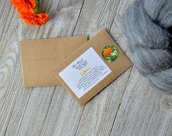 Safflower Dye Plant Seeds, Grow A Dye Garden with Rare Dye Plants