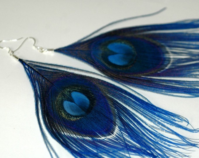 Blue Peacock Feather Earrings