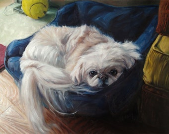 """TOOTSIE, custom Pet Portrait Oil Painting by puci, 12x16"""""""