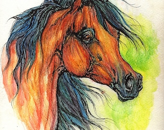 Bay arabian horse, equine art, equestrian portrait,  original pen and watercolor  painting
