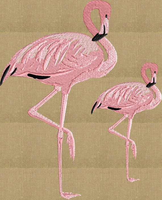 Flamingo pair embroidery design file instant download dst for Embroidery office design version 9