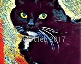Framed 8 x 10 cat art print, cat wall art, cat art, cat print, cat art print, art for kids room,  cat lover gift,