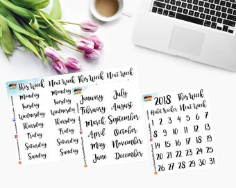 MONTHS, WEEKDAYS and DAILY ~ Planner Stickers ~ For Undated T N Inserts - CAM00364