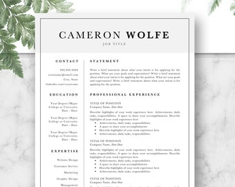 Professional Resume Template, CV, Curriculum Vitae, Template Design, Instant Download For Word, Two-Page Resume, Gray, Cameron