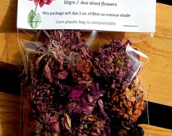 Dahlia dried flowers