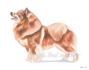 Finnish Lapphund Dog - Archival Quality Art Print - AKC Best in Show Champion - Breed Standard - Herding Group - Original Art Print