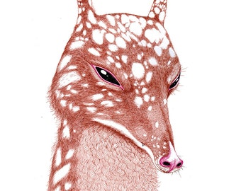 Furry Animal Illustration Print