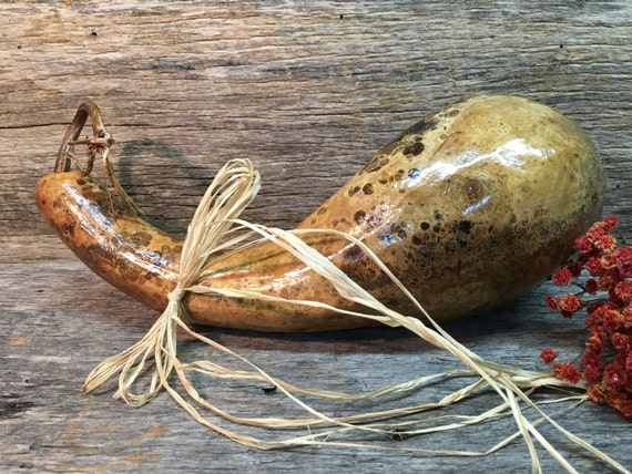 Canadian goose painted gourd | Gourds | Pinterest ... |Dried Gourds Goose