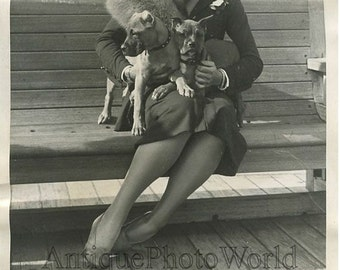 Pianist Polly Damrosch w Boxer dogs antique photo