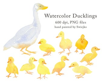 Country clipart set, ducks, ducklings, watercolor animals, hand painted illustration