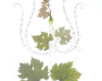 Wines of Welcome 1--print from real leaves and calligraphy