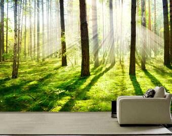 for t de bouleau en peinture murale dhiver papier peint. Black Bedroom Furniture Sets. Home Design Ideas