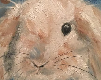 A Bunny to love
