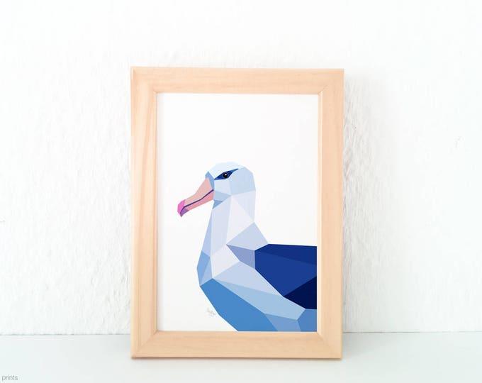 Albatross bird art, New Zealand albatross art, Sea birds poster, Sea theme decor, Ocean birds print, Seaside animal art, New Zealand birds
