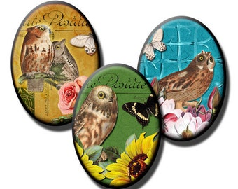 Wise Owls – 18x25mm and 13x18mm Ovals - (2) Digital sheets