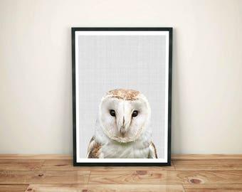 Owl Print, Owl Decor, Nursery Printable,  Nursery Wall Decor, Art Print, Owl Art, Nursery Wall Art, Printable Wall Art, Digital Download Art